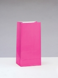 12 Hot Pink Paper Party Bags